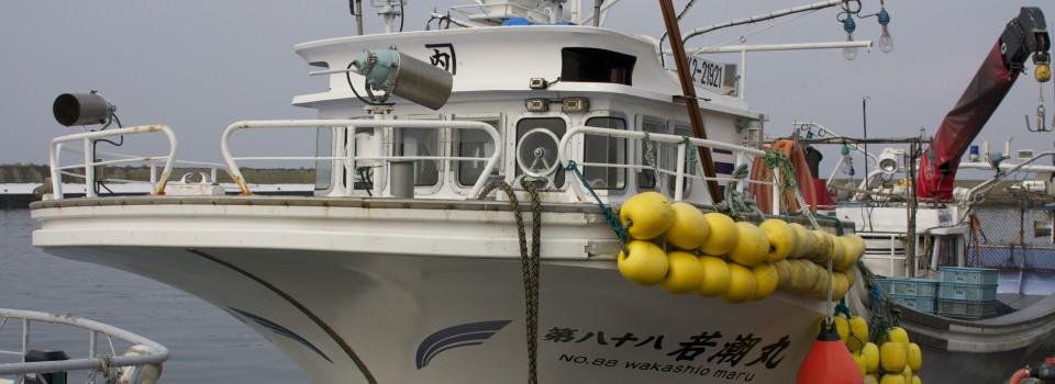 北海道虻田郡洞爺湖町の新鮮な帆立を本物の漁師からあなたへ